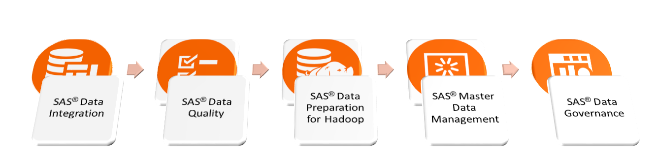 SAS DataManagement